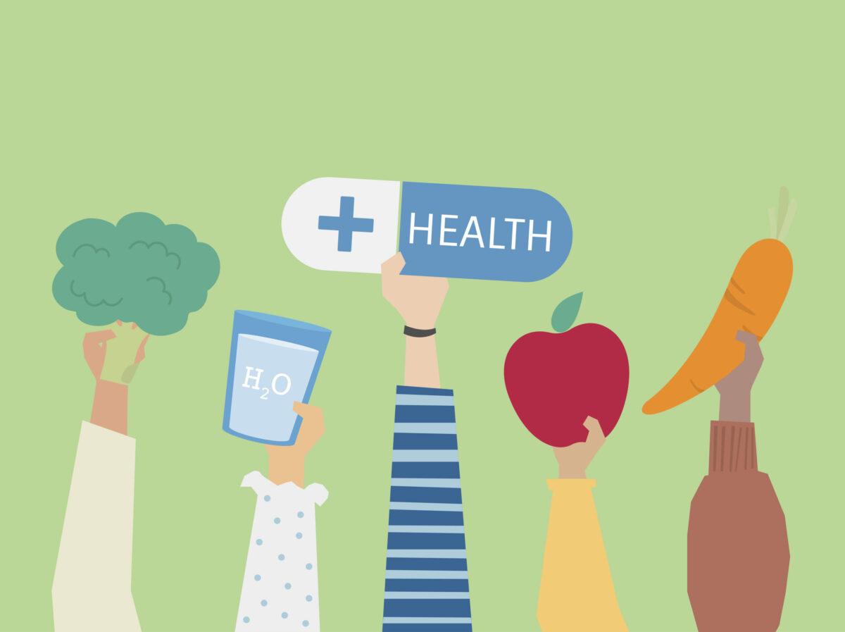 Die Macht des Darms über Gesundheit und Krankheit